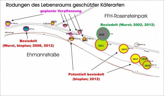 Rote Ränder sind Rodung, violette mögliche Verpflanzungen, grüne (Ränder) sollen erhalten bleiben. Bei blauer Füllung sind Juchtenkäfer nachgewiesen, bei gelber Füllung besteht eine hohe Wahrscheinlichkeit.
