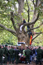 2010 People fighting for trees in Stuttgart. In this case they lost this (and many other) tree but they still fighting for others.